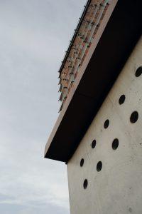 jente-bergmans-2